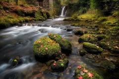 angliia-les-rechka-vodopad