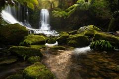 priroda-dzhungli-vodopad-tasmaniia-reka-kamni