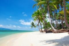 solntse-tropical-summer-more-sand-bereg-pesok-sea-pliazh-p-1
