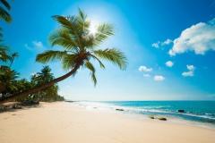 tropiki-more-pliazh-kariby