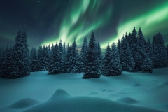 zima-sneg-sugroby-severnoe-siianie-les-eli